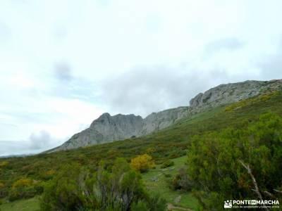 Montaña Palentina;Fuente Cobre;Tosande; lavanda brihuega ulaca manchuela ruta del rio borosa